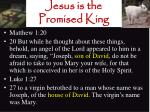 jesus is the promised king13