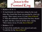 jesus is the promised king16