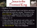 jesus is the promised king17