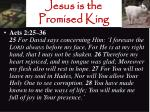 jesus is the promised king19