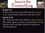 jesus is the promised king2