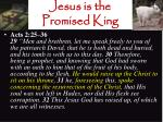 jesus is the promised king20