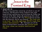 jesus is the promised king21
