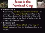 jesus is the promised king22