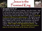 jesus is the promised king5