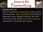 jesus is the promised king7