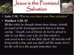 jesus is the promised salvation