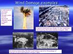 wind damage examples