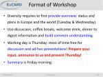 format of workshop