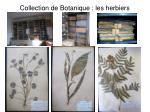 collection de botanique les herbiers
