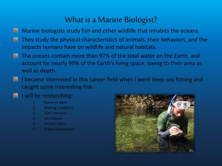 What is a marine biologist