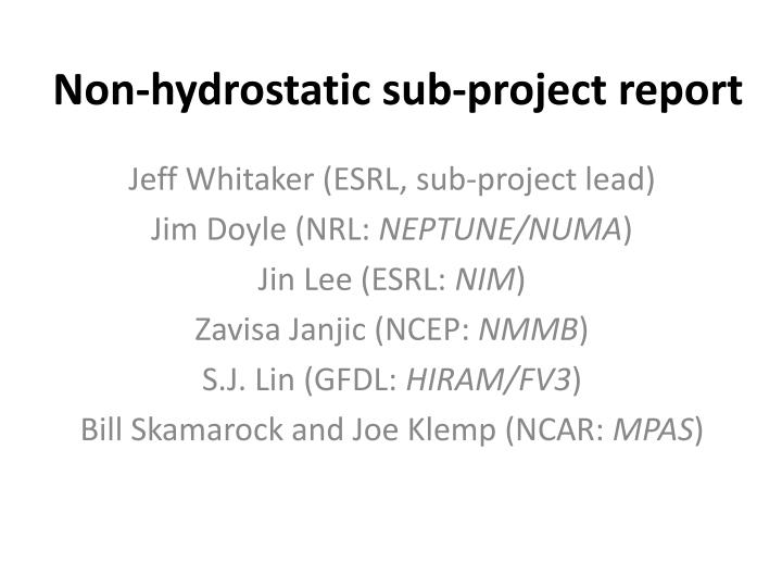 non hydrostatic sub project report n.