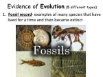evidence of evolution 5 different types