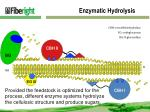 enzymatic hydrolysis