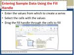 entering sample data using the fill handle