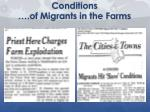 conditions of migrants in the farms