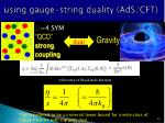 using gauge string duality ads cft