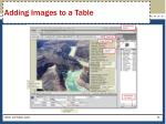 adding images to a table2