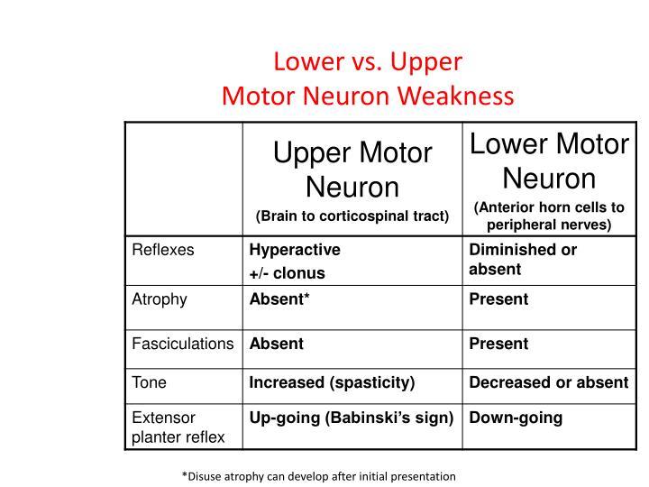 Lower vs. Upper