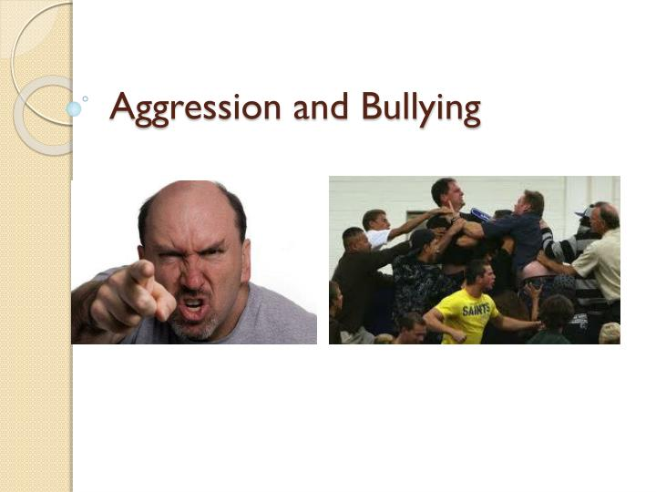 aggression and bullying n.