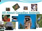 all about canadian animals