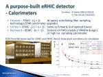 a purpose built erhic detector calorimeters
