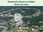 relativistic heavy ion collider bird s eye view