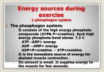 energy sources during exercise 1 phosphogen system