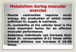 metabolism during muscular exercise
