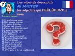 les adjectifs descriptifs jeu notes les adjectifs qui pr c dent le nom
