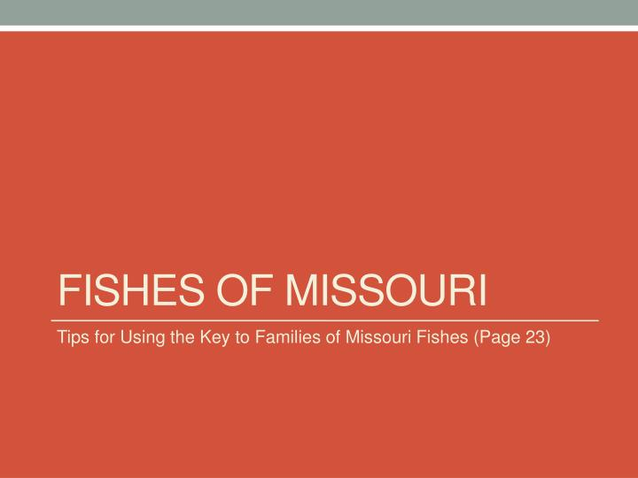fishes of missouri n.