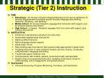 strategic tier 2 instruction