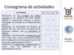cronograma de actividades1