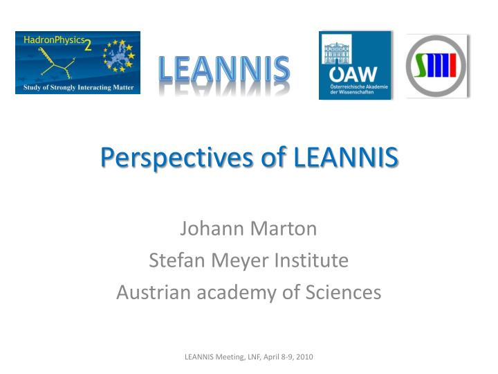 perspectives of leannis n.