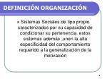 definici n organizaci n