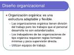 dise o organizacional3