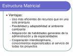estructura matricial1