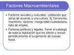 factores macroambientales