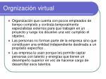 orgnizaci n virtual