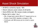 asset shock simulation1