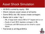 asset shock simulation2