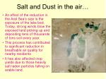 salt and dust in the air