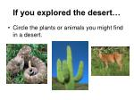 if you explored the desert