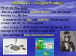 section 21 2 chemical pollutants2
