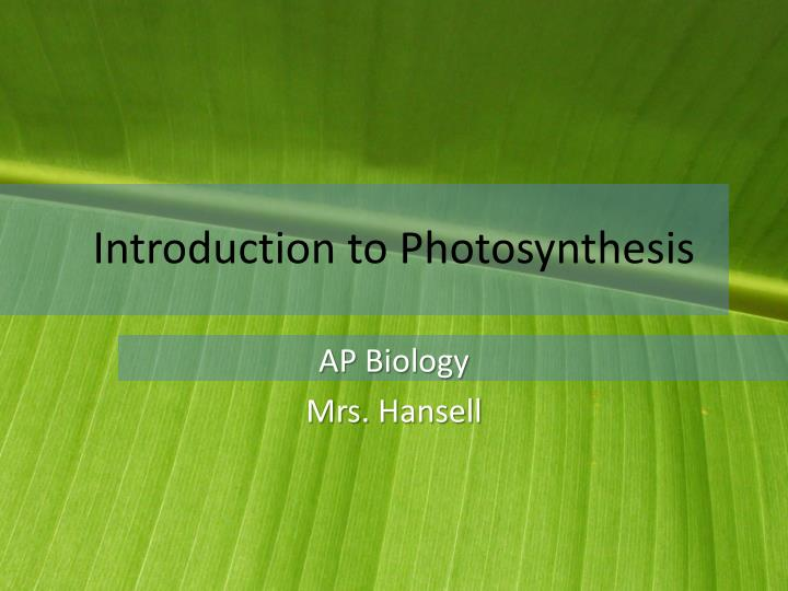 introduction to photosynthesis n.