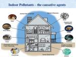 indoor pollutants the causative agents
