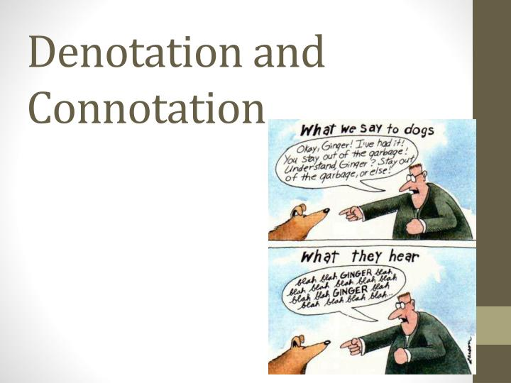 essay on denotation and connotation