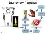 involuntary response