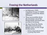 freeing the netherlands