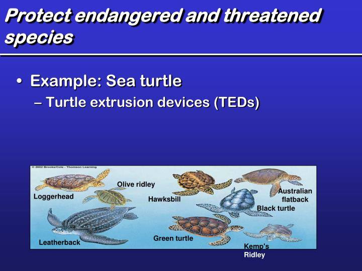 Protect endangered and threatened species